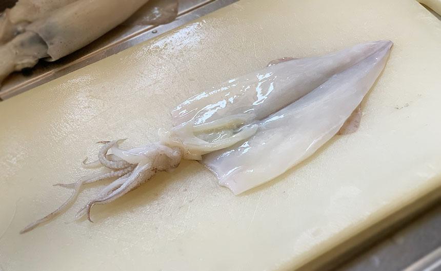 イカの内臓処理